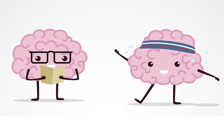 Нейробика – аэробика для мозга