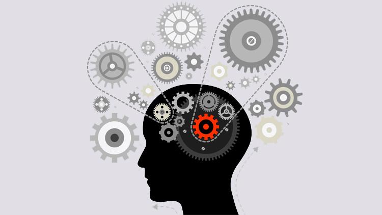 5 лучших упражнений для развития и тренировки интеллекта