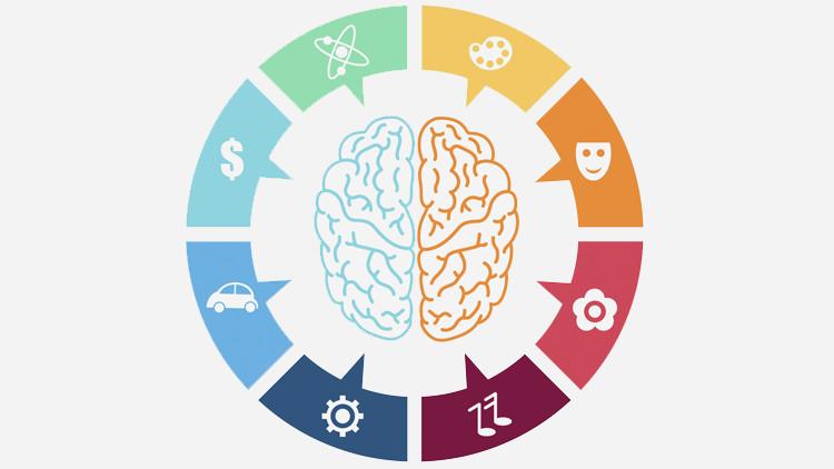 Мифы о работе мозга