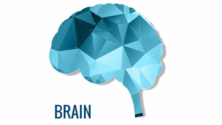 Как улучшить память у пожилых людей без употребления лекарств
