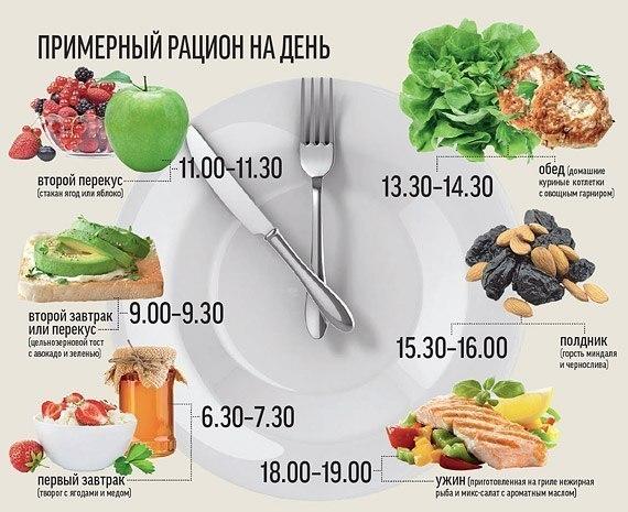Разнообразие питания