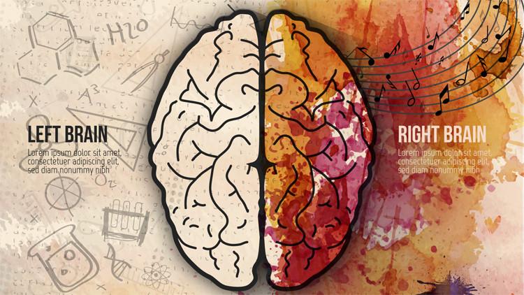 Что такое правополушарное мышление?