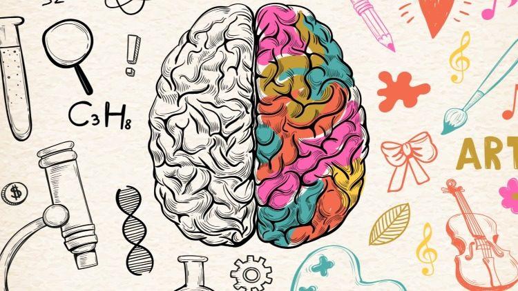 Удивительные факты о работе головного мозга