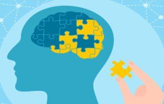 Обнаружен ранее неведомый участок мозга