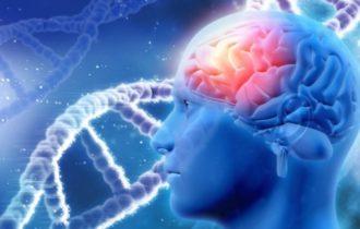 Как очистить мозг от информационного мусора и облегчить жизнь