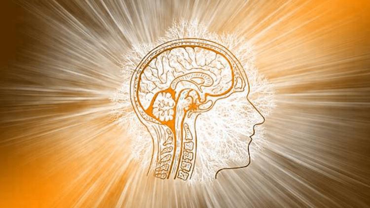 Наш праздник — Всемирный День Мозга